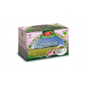 Echinacea, ceai la plic